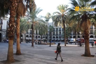 la plaza #expresate